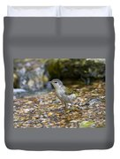 Tennessee Warbler Duvet Cover