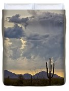 The Beauty Of The Desert  Duvet Cover