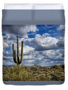 The Beauty Of The Desert Southwest Duvet Cover