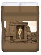 The Palaestra - Apollo Sanctuary Duvet Cover