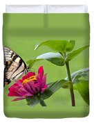 Tiger Swallowtail Butterfly On Zinnia Duvet Cover