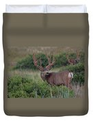 Two In The Bush Duvet Cover by Jim Garrison