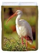 White Ibis Eudocimus Albus Duvet Cover