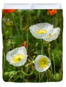 White Iceland Poppy - Beautiful Spring Poppy Flowers In Bloom. Duvet Cover