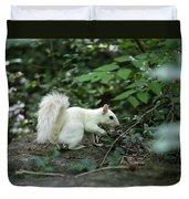 White Squirrel Duvet Cover