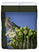 White-winged Dove Atop A Saguaro Duvet Cover