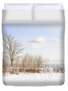Winter Shore Of Lake Ontario Duvet Cover by Elena Elisseeva