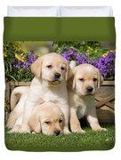 Yellow Labrador Puppies Duvet Cover