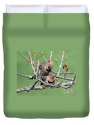 Yellow-shafted Northern Flickers Duvet Cover