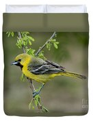 Young Orchard Oriole Duvet Cover