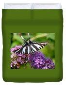 Zebra Swallowtail Butterfly At Butterfly Bush Duvet Cover