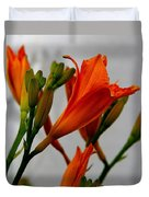 2013 Day Lilies Duvet Cover