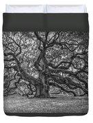 Angel Oak Tree In Black And White Duvet Cover