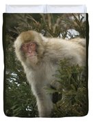 Japanese Macaque Duvet Cover