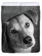 Portrait Of Red Bone Coon Mix Dog Duvet Cover