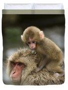Snow Monkeys Japan Duvet Cover