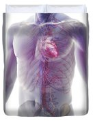 The Cardiovascular System Duvet Cover