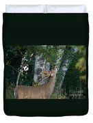 White-tailed Buck Duvet Cover by Linda Freshwaters Arndt