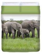 African Elephants Grazing  Kenya Duvet Cover