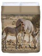 African Wild Ass Equus Africanus Duvet Cover
