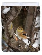 American Goldfinch In Winter Duvet Cover