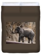 Asian Elephant Duvet Cover