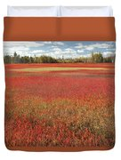 Autumn Blueberry Field Maine Duvet Cover
