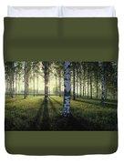 Birch Trees By The Vuoksi River Duvet Cover