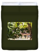 3 Bucks Caught In A Orchard Duvet Cover