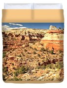 Calf Creek Falls Canyon Duvet Cover