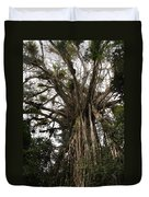 Cathedral Fig Tree Duvet Cover