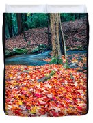 Chesterfield Gorge New Hampshire Duvet Cover