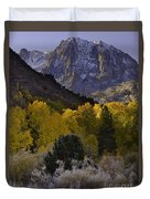 Eastern Sierras In Autumn Duvet Cover