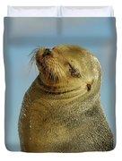 Galapagos Sea Lion Zalophus Wollebaeki Duvet Cover