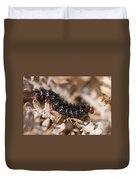 Glanville Fritillary Butterfly Caterpillar - Melitaea Cinxia Duvet Cover