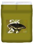 Gold Rim Swallowtail Butterfly Duvet Cover