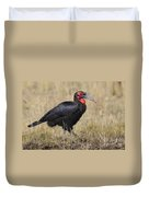 Ground Hornbill Duvet Cover