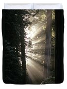 Jedediah Smith Redwoods State Park Redwoods National Park Del No Duvet Cover