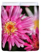 Marguerite Daisy Named Summer Song Rose Duvet Cover