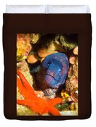 Moray Eel With Starfish Duvet Cover