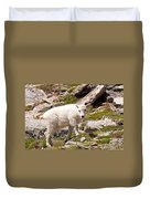 Mountain Goat Kid On Mount Evans Duvet Cover
