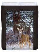 Mule Deer In Snow Duvet Cover