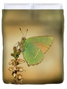 Nature And Places Of Spain Duvet Cover