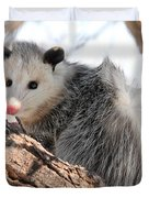 North American Opossum In Winter Duvet Cover