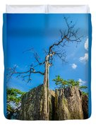 Old And Ancient Dry Tree On Top Of Mountain Duvet Cover
