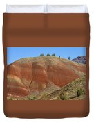 Painted Hills Of Oregon Duvet Cover