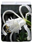Peruvian Daffodil Named Advance Duvet Cover