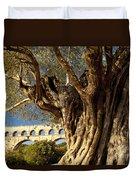 Pont Du Gard Duvet Cover