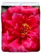 Portulaca Named Sundial Fuchsia Duvet Cover