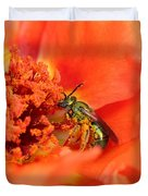 Portulaca Named Sundial Tangerine Duvet Cover